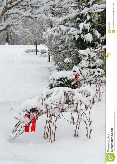 winter landscape trees  deer stock image image