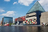 National Aquarium | Baltimore, USA Attractions - Lonely Planet