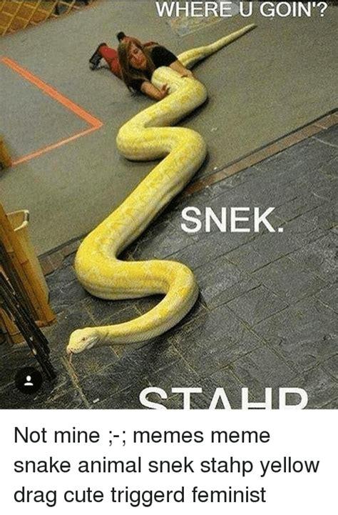 Snake Meme 25 Best Memes About Snake Anime Snake Anime Memes