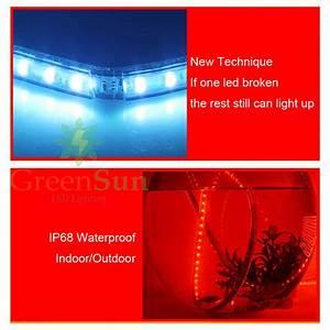 5 20m 60 leds meter led strip light ultra bright 5050 smd With outdoor led strip lights 20m