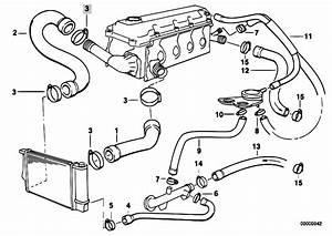Original Parts For E36 318i M43 Touring    Engine   Cooling