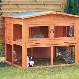 Maison Pour Lapin : comment choisir un clapier lapin ~ Premium-room.com Idées de Décoration