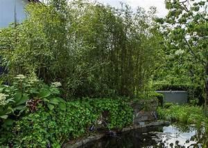 Bambus Vernichten Tipps : garten tipps team gr n furtner althaus garten landschaftsbau ~ Whattoseeinmadrid.com Haus und Dekorationen
