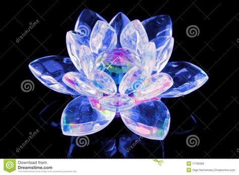fleur de lotus en verre photo stock image du elegance
