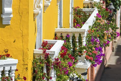 fiori da terrazzo come arredare il balcone con i fiori non sprecare