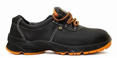 Shoes Safety Talan Category Uae