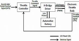 Electronic Throttle