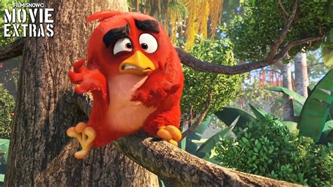 angry birds  birds  pigs  characters