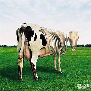 Morgaua Quartet Atom Heart Mother Is On The Edge CD