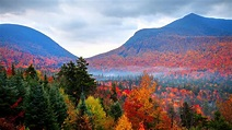 Autumnwatch in New England - State by State Features ...