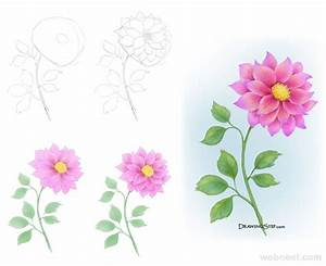 flower drawing step by step 32 - Full Image
