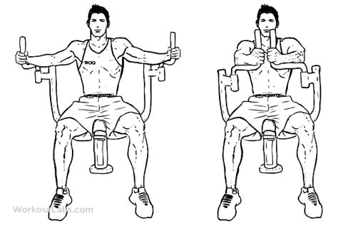 pec deck exercise with dumbbells butterflies pec deck seated machine flyes workoutlabs