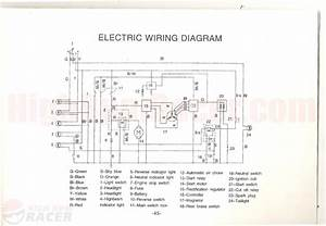 Wiring Diagram A Black Widow Mini Chopper