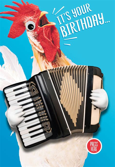 crazy chicken musical birthday card  motion greeting