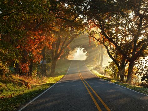 autumn road  ultra hd wallpaper background image