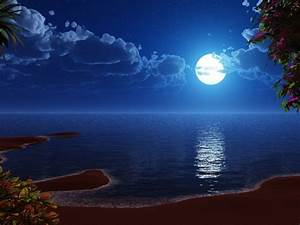 Valentines Wallpapers: Beach At Night Wallpapers