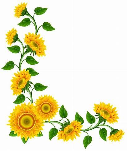 Sunflower Border Clipart Cliparts Clip Library