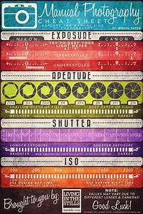 Un Guide Simple Et  U00e9l U00e9gant Pour Profiter De Votre Reflex
