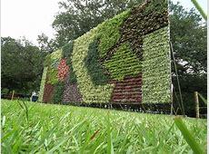 Vertical Vegetable Gardening Ideas Fresh Vegetables Bottle