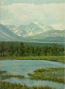 Postkort  Rondane I Oppland Og Hedmark  Norge   National Parks