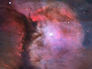 Hubble panoramic view of Orion Nebula reveals thousands of ...