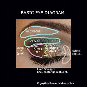 How To Apply Eye Makeup Diagram