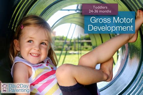 gross motor activities for toddlers 24 36 months 649 | gross motor toddlers 881x587