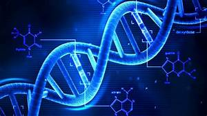 Dna - What Is Dna  - Basics Of Dna