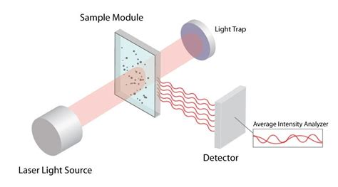 dynamic light scattering dynamic light scattering particle characterization