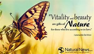 QuotesWorld: Quotes about nature beauty with wallpaper