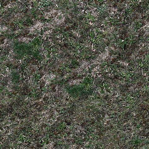 forest floor texture forest floor terrain 0010 texturemax