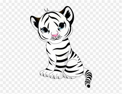 Tiger Coloring Leopard Snow Drawing Pages Clipart