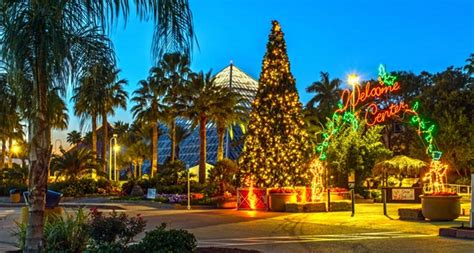 festival of lights houston day 3 giveaway moody gardens in galveston houston on the cheap
