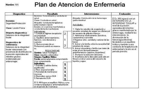 revista electronica de enfermeria guayaquil ecuador plan