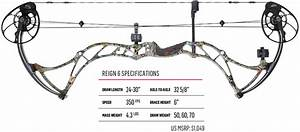 Compound Bow Specifications And Jargon  Chapter 1