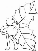 Holly Coloring Pages Leaves sketch template