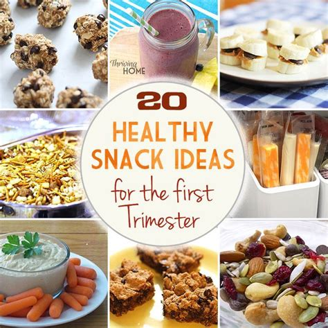 high protein  sugar snack ideas