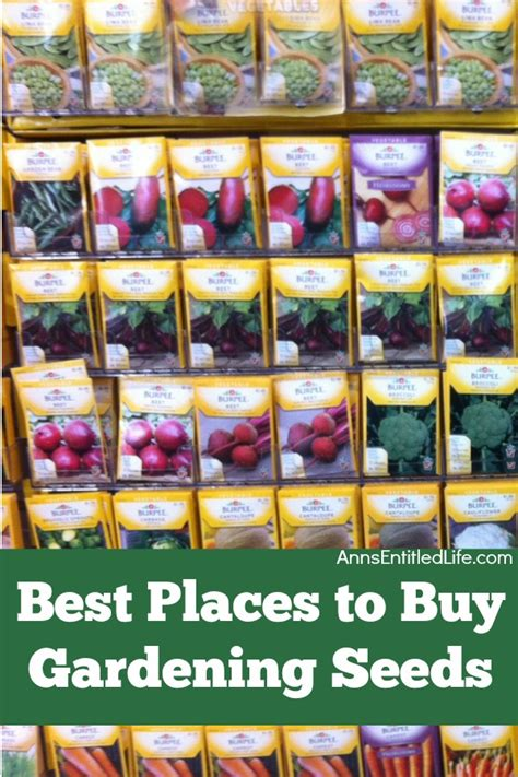 Best Places To Buy Gardening Seeds