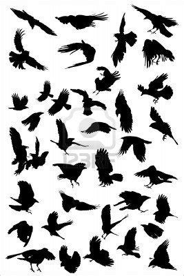 4596184-crows-flying-vector-silhouette-collection.jpg (267