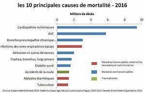 Nombre De Mort Sur La Route 2018 : les 10 principales causes de mortalit ~ Maxctalentgroup.com Avis de Voitures