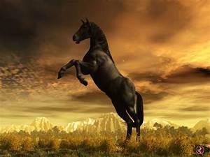 Free Horse Wallpaper 3D - WallpaperSafari