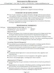 Best Resume Templates Resume For A Senior Manager Of Operations Susan Resumes