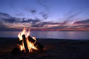 Shell Key Campfires Banned During Summer Nesting Season ...