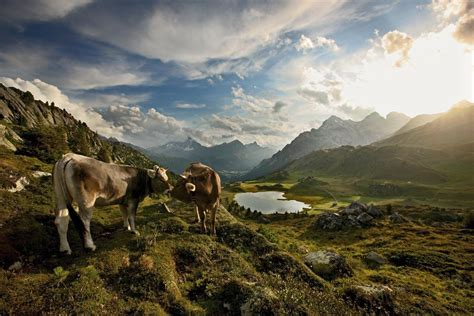 naturpark beverin graubuenden ferien schweiz