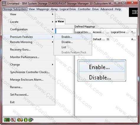 ibm ds4000 storage manager 10