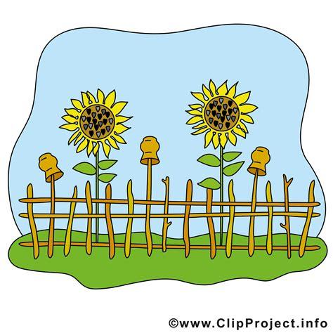 Garten Clipart Bild Kostenlos