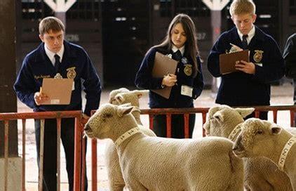 livestock evaluation national ffa organization