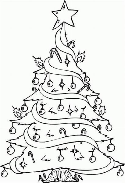Coloring Christmas Pages Tree Trees Printable