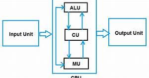 Class 11 Hardware Concepts  Informatics Practices  Ip