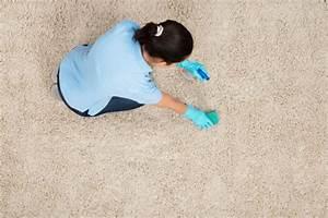 Comment Nettoyer Une Moquette : astuces pour nettoyer une moquette grands ~ Dailycaller-alerts.com Idées de Décoration